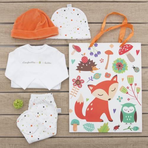 Pack recién nacido de primera puesta para bebé de camiseta bordada con motivos otoñales , pantalón y gorrito a juego. Un gorro d